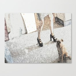 St: Simeon Griffon Bruxellois 20 Canvas Print