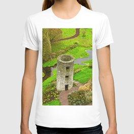 a bunch of blarney  T-shirt