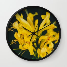Beautiful yellow flower on black background - Botanical Photography #Society6 Wall Clock