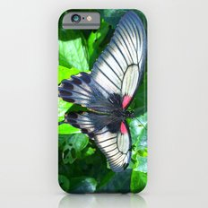 Butterfly 2 Slim Case iPhone 6s