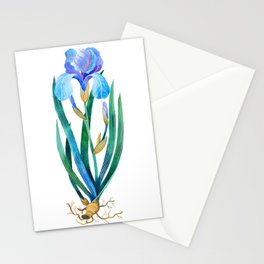 Light Blue Iris Stationery Cards