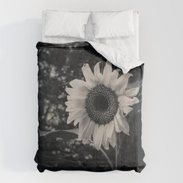 Sunflower in the Dark. Black and White Photograph Comforters