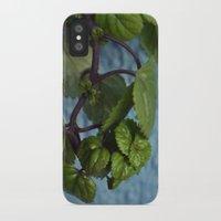 swedish iPhone & iPod Cases featuring Swedish ivy by Camaracraft