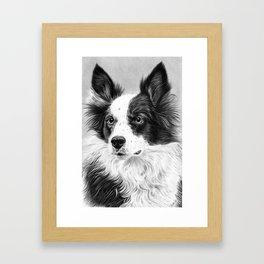 Dog Portrait 02 Framed Art Print