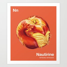 Nn - Nautirine // Half Nautilus, Half Nectarine Art Print