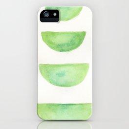 Turtle Shells iPhone Case