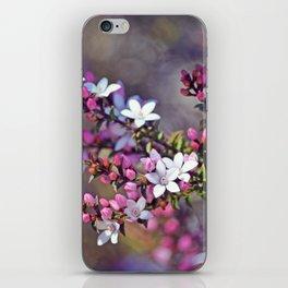 Australian Box Leaf Waxflowers iPhone Skin