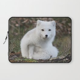 Polar Fox by Anne Elisabeth Laptop Sleeve