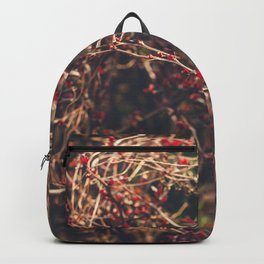 Red Spikes Backpack