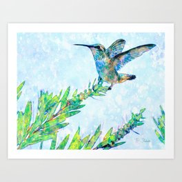 Hummingbird Lands-Barbara Chichester Art Print