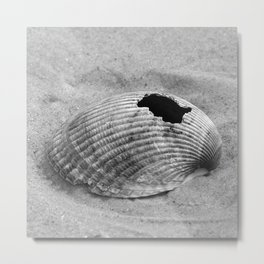 broken shell, black and white Metal Print
