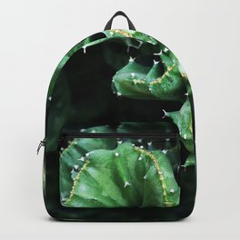 Emerald green Cactus Botanical Photography, Nature, Macro, Backpack