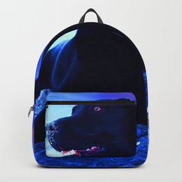 Ziggy Black Labrador Backpack