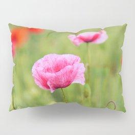 Poppy, Poppies, Mohn, Mohnblume, Flower, Blume, Blumen, Mohnblumen, Foto Pillow Sham