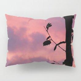 Pink Sunset Pillow Sham