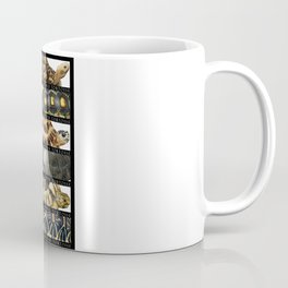 Tortoises of the World II Coffee Mug