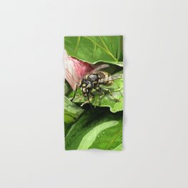 Wasp on flower16 Hand & Bath Towel