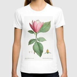 Lily magnolia (Magnolia discolor) from Traite des Arbres et Arbustes que lon cultive en France en pl T-shirt