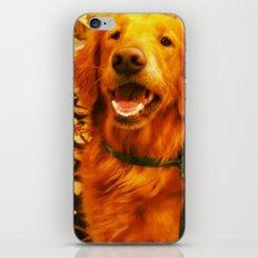 Christmas Pup iPhone & iPod Skin