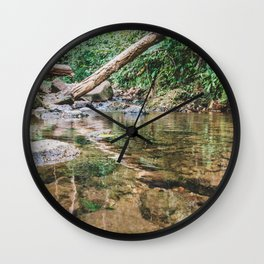 Forest is our country treasure, we have to protect it from harm. Wall Clock