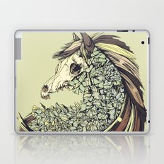 Beautiful Horse Old Laptop & iPad Skin