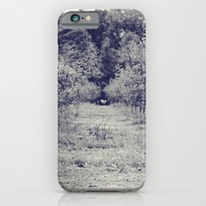 apple orchard iPhone 6s Slim Case