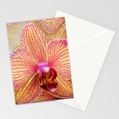 Explosion of Orchids Stationery Cards