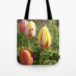 Yellow and Orange Tulips Tote Bag