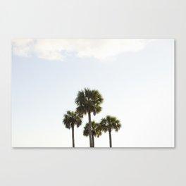 Four Palms Canvas Print
