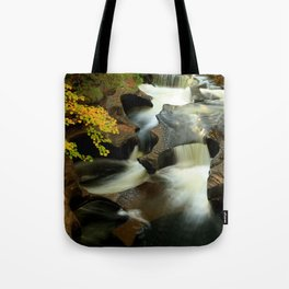 Fall from the Bridge Tote Bag