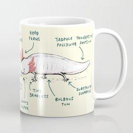 Anatomy of an Axolotl Coffee Mug