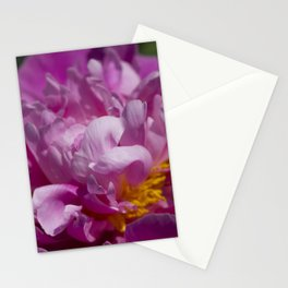 The Pinks of Peony Stationery Cards