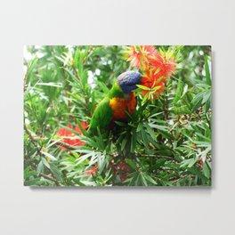 A Bird in the Bush Metal Print