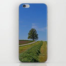 Relaxing in a field iPhone Skin