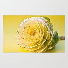 Cabbage Rose  Rug