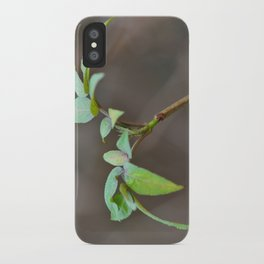 New Beginnings  iPhone Case