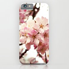 Front and Centre Slim Case iPhone 6s