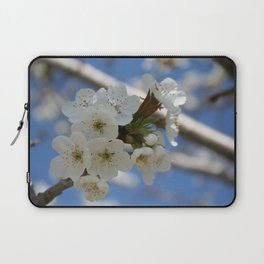 Beautiful Delicate Cherry Blossom Flowers Laptop Sleeve