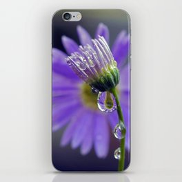 puple dew 3 iPhone Skin