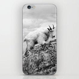 MOUNTAIN GOATS // 4 iPhone Skin