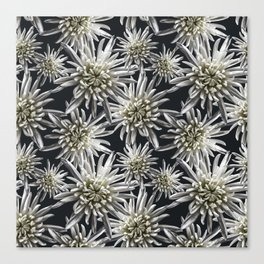 Mum Floral Pattern - Mum's the word - Black and White Floral Design - White Mum Flowers - I Love my Canvas Print