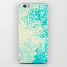 737 iPhone & iPod Skin