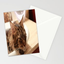 Deep in Thought Stationery Cards