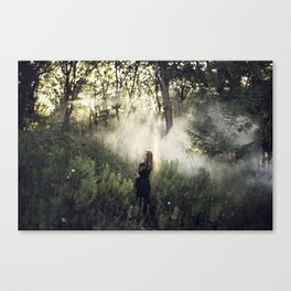 capturing beauty Canvas Print