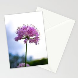 Color Botanical 4 Stationery Cards