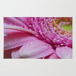 Gerbera in Pink Rug