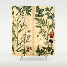 Natural History of the Plant Kingdom 1870 Shower Curtain