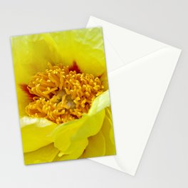 yellow peony macro II Stationery Cards