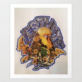 Aesthete Art Print