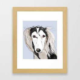Saluki Framed Art Print